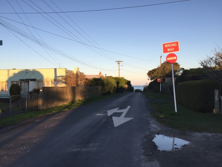 karitane road.jpg