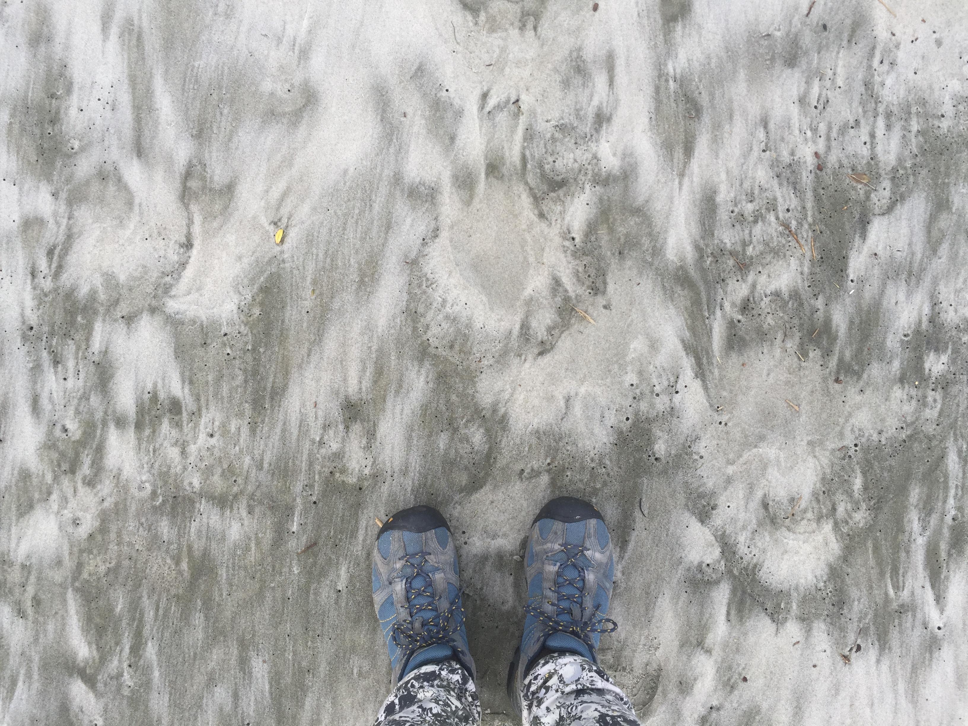 foot pic.JPG