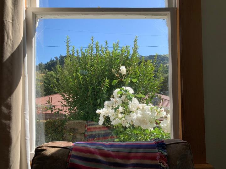 window pic jpeg